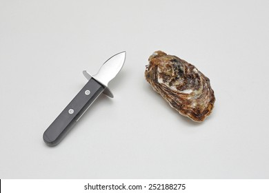 Raw oyster and special shucker knife with short blade