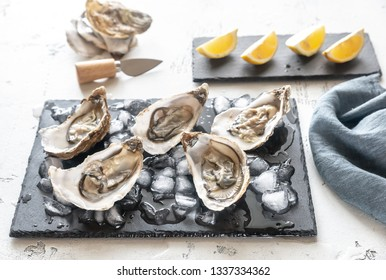 Raw oysters on the slate board close-up