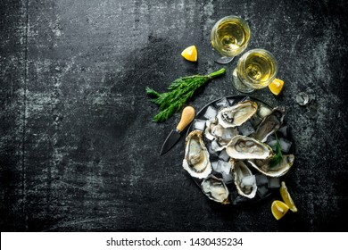 Raw oysters with white wine, ice cubes and lemon slices. On dark rustic background