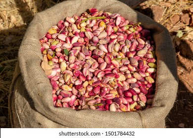 Raw pistachio nuts on a market bench in Gaziantep City, Turkey. Traditional dry nuts, as also known Antep Fistigi in Turkish
