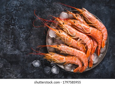 Raw red Argentine shrimps ocean jumbo shrimps on ice copy space black background.