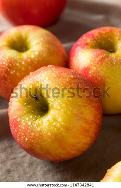 Raw Red Organic Honeycrisp Apples Ready to Eat