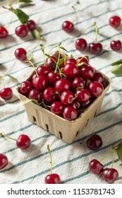 Raw Red Organic Tart Cherries Ready to Eat