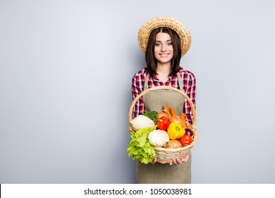Raw rural store grocery season autumn spring fall checkered shirt straw hay onion pepper carrot cabbage people concept. Portrait of satisfied glad woman carrying basket isolated on gray background