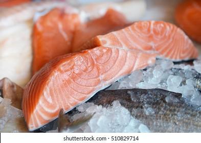 Raw salmon fillet on ice.
