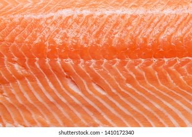 Raw salmon fish fillet macro texture. Top view flat lay