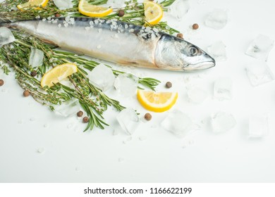 Raw sardines on a table with ice and spices. View from above.