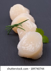 Raw scallop