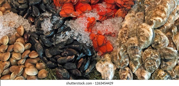 Raw seafood bar: clams, mussels, lobster tails, and oysters