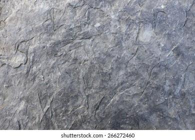 Raw slate tile