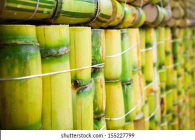 Raw sugar cane background