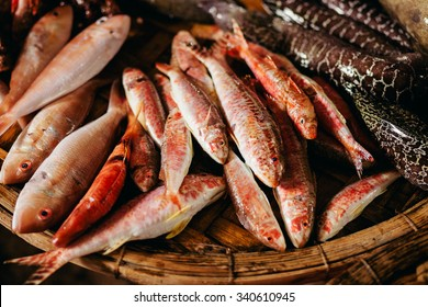 Raw tropical fish assorted at street local market in Asia, Vietnam