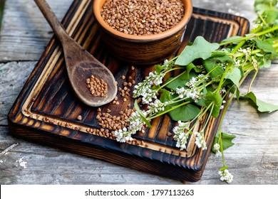 Raw uncooked buckwheat. Ingredients for gluten-free porridge. sprig of buckwheat with white flowers.