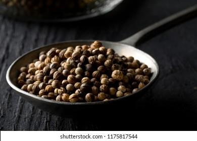Raw, unprocessed organic coriander or cilantro seeds in metal spoon on dark wooden table