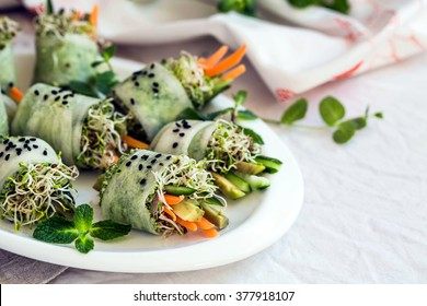 Raw vegan rolls with sprouted seeds and carrots