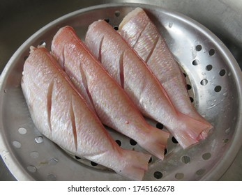 Raw Whisker Sheatfish is valued as food in the local cuisine for its delicate flesh, is also often used for making fish balls