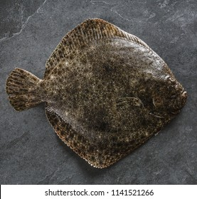 Raw whole flounder fish on dark stone background, top view