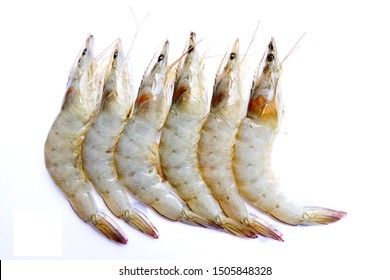Raw whole fresh uncooked prawns shrimps isolate in a white background. Top view with copy space, fresh uncooked prawns shrimps bought at the marking, fresh prawn shrimp for cooking, seafood.