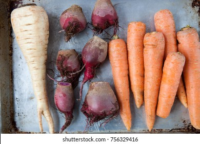Raw whole root vegetables, carrots, beets and a parsnip, on a silver sheet pan.