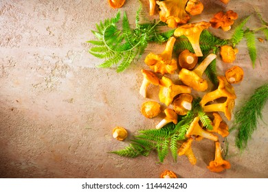 Raw wild chanterelles mushrooms on old rustic background. Organic Fresh chanterelle border on a table. Copy space for your text