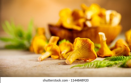 Raw wild chanterelles mushrooms on rustic background. Organic Fresh chanterelle background on a table. Soft focus