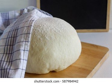 Raw yeast dough for bread or pizza dough.