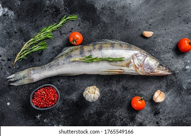 Raw zander, walleye fish with herbs. Black background. Top view