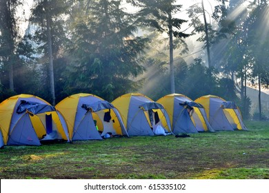 Ray of Light (ROL) on the camping ground