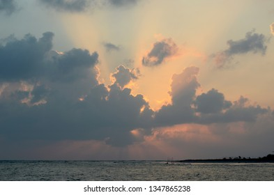 Rays of light from the rising sun emerge from behind dark clouds. The sun is hidden.  A tree-covered headland stretches into a calm ocean. The colours of dawn, from pink to blue fill the sky.