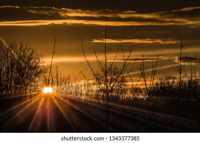 rays of the setting sun