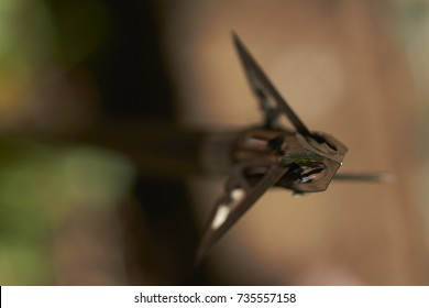 Razor sharp modern three blade broadheads made from surgical steel that used for bow hunting purposes on the tips of carbon arrows (Shallow DOF)