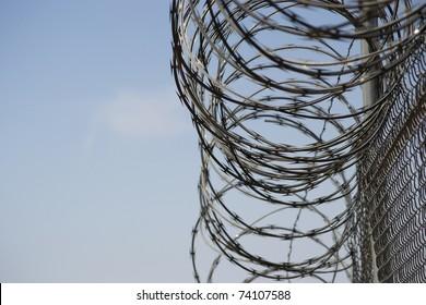 Razor Wire Chain Link Fence
