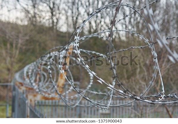 Razor wire on a steel security fence