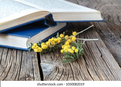 Reading educational book in spring time