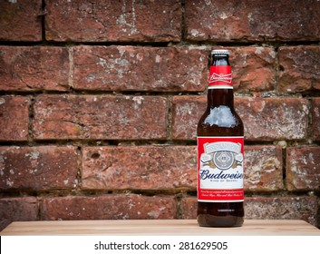 READING, ENGLAND - MAY 23, 2015: A single bottle of Budweiser on the wooden table and brick wall . From Anheuser-Busch InBev, Budweiser is one of the top selling domestic beers in the United States.