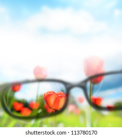 Reading eyeglasses and beautiful nature view. Sight care concept