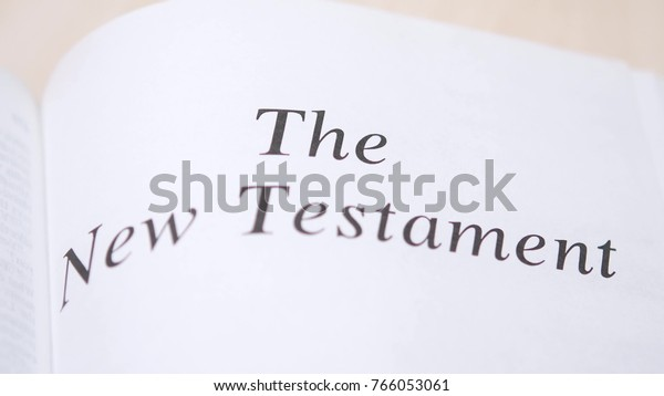 Reading New Testament Holy Bible On Stock Photo (Edit Now