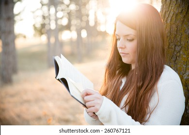 Reading Outdoors - This is an image of a beautiful young woman enjoying the nice weather and reading outside in the park.