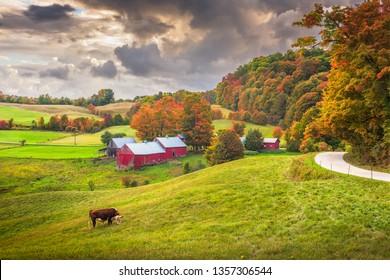Reading, Vermont, USA rural farm scene at dusk.