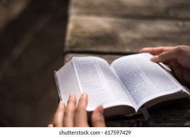 Reading the Word of God the Bible Holy Book