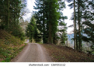 Real Black Forest road / hiking & biking track in Germany, Europe