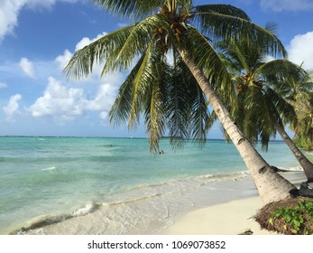 Real bounty island in Saipan, North Mariana Islands. White sand seashore with tranquil water of Philippine sea at North Pacific Ocean. Beautiful summer paradise Saipan island in the middle of ocean.