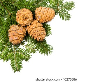 Real christmas pine and cones, isolated on white