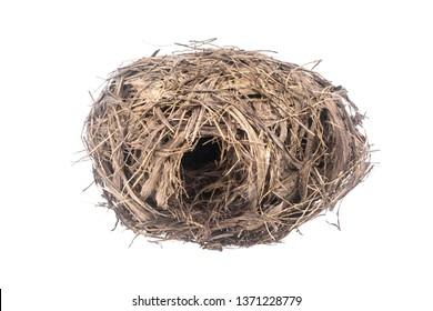 Real empty bird nest isolated on white background