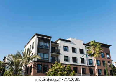 Real estate property in Playa Vista, California. Beautiful palm trees and tropical plants