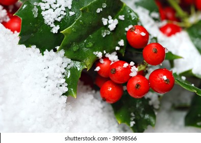 Real holly berries and leaves with artificial snow.  Macro with extremely shallow dof.