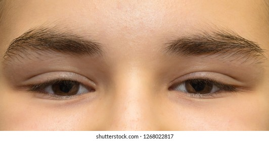 Real human eyes in different versions on the photo.