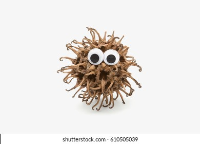 real lovely monster with googly eyes on white background