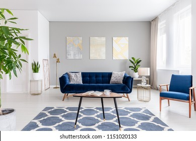 Real photo of an elegant living room interior with a blue sofa, armchair, coffee table, patterned carpet and paintings on the gray wall