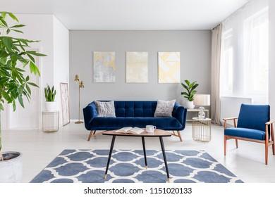 Vrai photo d'un élégant salon intérieur avec canapé bleu, fauteuil, table basse, moquette à motifs et tableaux sur le mur gris